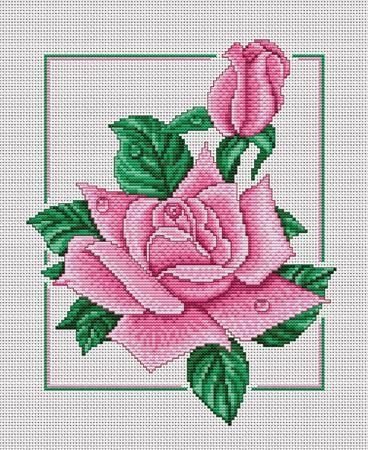 "Panna ""Розовый дуэт"""